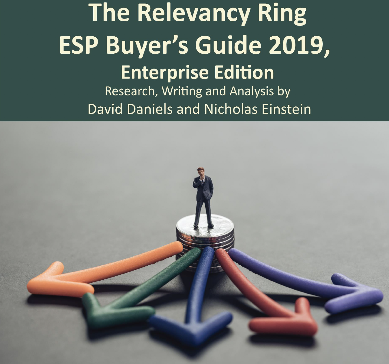The Relevancy Ring ESP Buyer's Guide 2019, Enterprise Edition
