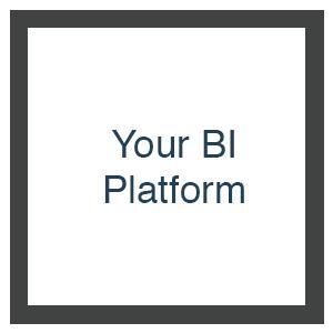 Your BI Platform